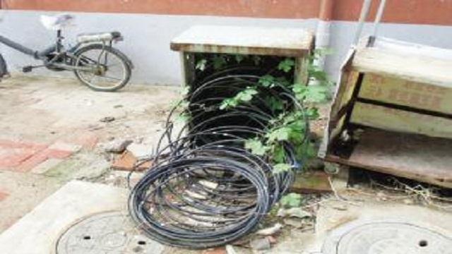 明目张胆盗割电缆称是修线路