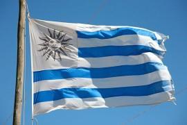 乌拉圭140兆瓦风电项目获中方4.5亿贷款