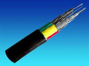吉林大学钻进电缆项目竞争性谈判公告