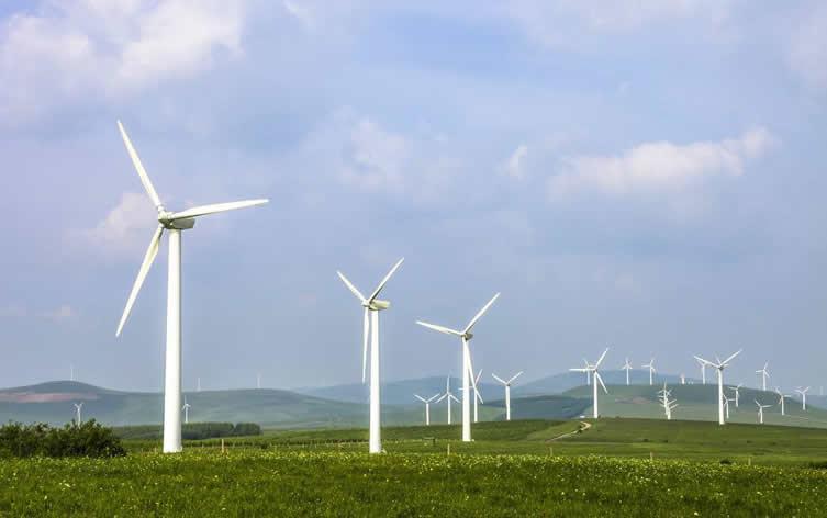 青海格尔木3个50兆瓦风力发电项目集中开工