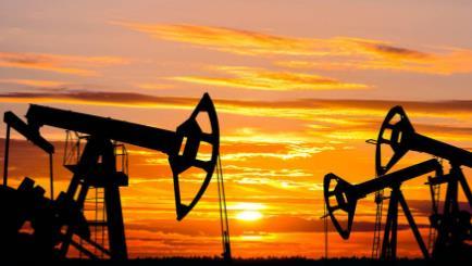 国际咨询机构称石油需求短期不会断崖式下跌
