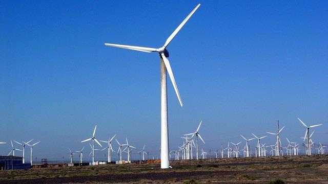 青海海西州1950兆瓦风电公共基础设施共建项目启动建设