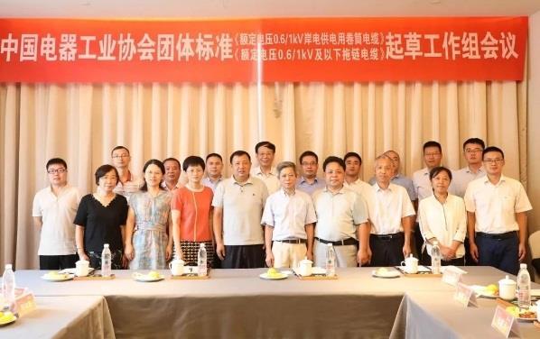 远东必赢56net手机版承办两项必赢56net手机版团体标准起草工作会议举行