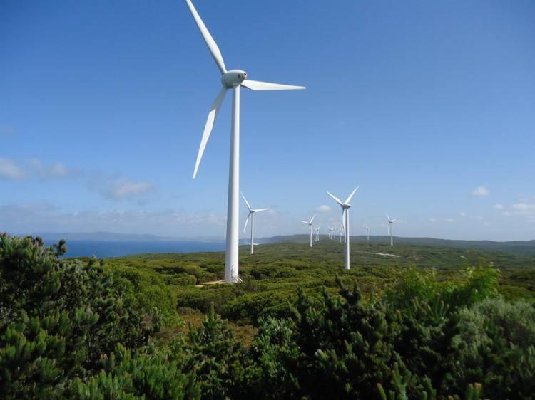 到2030年美国风电场运维支出将增至75亿美金